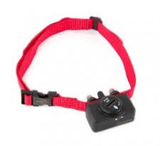 collar anti ladrido perro adiestador san sebastian ana masoliver