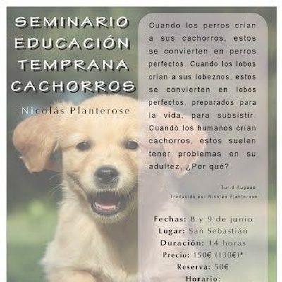cartel seminario educacion temprana perros san sebastian