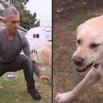 perro grune cesar millan educacion canina ana masoliver