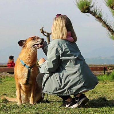 perro parque san sebastian educacion canina ana masoliver