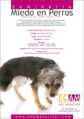 cartel seminario miedo en perros santi vidal educacion canina ana masoliver