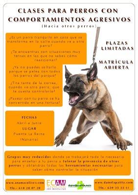 cartel curso perros agresivos educacion canina ana masoliver